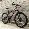Good Design Carbon Road Bike (ly-a-75)