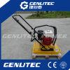 50kg~160kg Honda/Robin/Loncin Gasoline Engine Hand Hold Plate Compactor