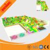 Customized Indoor Playground for Kids (XJ5076)