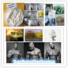 High Purity Injectable Drostanolone Propionate for Muscle Building