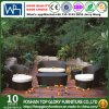 Garden Patio Furniture Round Rattan Sofa (TG-JW19)