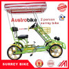 Hot Sale Cheap Surrey Bike 2 Person