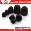 High Strength Steel DIN1587 Cap Nut