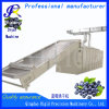 Conveyor Belt Dryer Cranberry and Blueberry Drying Equipment