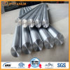 Gr7 Titanium Bar (Ti-0.2Pd) , Gr7 ASTM B348 Industry Forged Titanium Alloy Bar