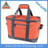 Camping 30 Liter Big Capacity Collapsible Insulated Picnic Cooler Bag