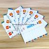 PP A4 Jan-DEC Index Divider, Tab Divider, Index Cards