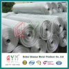 PVC Coated Welded Wire Mesh Rolls for Construction