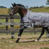 Horse Winter Waterproof Rug
