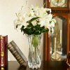 Pure Crystal Glass Vase for Home Decoration