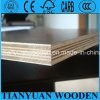 18mm High Quality Construction Concrete Plywood with Cheap Price