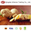 Top Quality 2017 Chinese Fresh Ginger