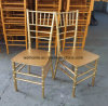 Monobloc One Piece Gold Resin Chiavari Chair