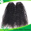 Human Hair Extension Wholesale High Quality Brazillian Loose Curly