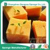 Year-Around Family Farm Organic Garden Hydroponic System Planting Sponge&Foam