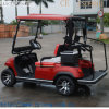 Lvtong Brand 2 Seaters Electric Car