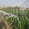 Hot Galvanized Razor Barbed Wire Fence Good Factory