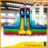 Beautiful Carousel Fun City Slides (AQ0134)