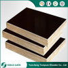 Building Construction Site Use Scaffolding Formwork Film Faced Plywood