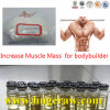 Injectable Steroid Hormone Testosterone Propionate Test P