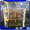 Commercial Building Light Steel Structure Poultry Egg Chicken House