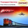 Freight Forwarding From Shenzhen, Guangzhou, Shanghai, Ningbo, Tianjin, Qingdao, Dalian
