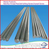 DIN975 /976 Stainless Steel 304/316 Threaded Rod