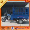China Manufacture Special Three Wheels Mini Truck