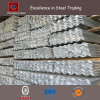 Galvanized Angle Section Iron for Construction (CZ-A81)