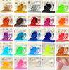 The Hot Fluorescent Color Glitter Powder (S0501)