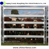 China Manufacture Portable Heavy Duty Galvanized Cattle Panel/Yard Panel/Cattle Pen for Sale (XMR98)