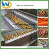 Cassava Potato Carrots Ginger Root Vegetable Washing Peeling Machine