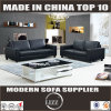 Modern Designed Furniture Leather Sofa