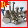 Wholesale Gr2 Titanium Color Bolts Made in China