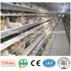 Promotion a Type Chicken Battery Cages for Layers