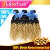 5A Fashion Brazilian Kinky Curl Ombre Human Hair Extension