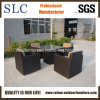 Garden Sofa Furniture/Antique Sectional Sofa / Furniture/Patio Furniture (SC-A7285)
