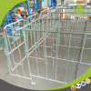 Wholesale Steel Gestation Crate for Individual Sow Pen Factory for Sale