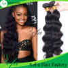 100% Unprocessed Indian Body Wave Virgin Human Hair Extension