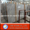 Best Selling Silver Mink Marble Slab in Stock