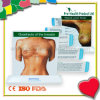 Breast Anatomic Education Model With Pull Out Cards