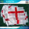 Cheap Polyester Bunting Flag (B-NF11F02010)
