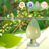 Factory Produce Competitive Price Product with Purity 98% Fisetin