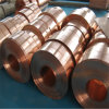 Phosphor Bronze Strip C1201 Tp2