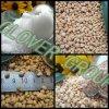 Nitrogen Fertilizer Granular Ammonium Chloride (25% N fertilizer)