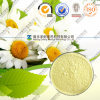 Natural Chamomile Extract 98% Apigenin