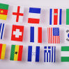 OEM 100% Polyester Portable Decorative American Bunting Flag