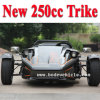 New 250cc Racing Tricycle Motorcycle