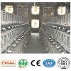 Hot Galvanized International Standard Poultry Equipment Chicken Broiler Cage