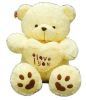 Latest Fashion 70 Cm Stuffed Love Bear Toy (KCQ38)
